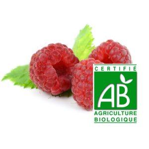 trois framboises rouges entières surgelées avec deux feuilles sur fond blanc et logo agriculture biologique