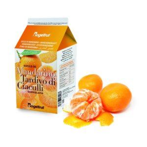 une brique de jus de mandarine surgelée avec deux mandarines et leurs peaux sur fond blanc