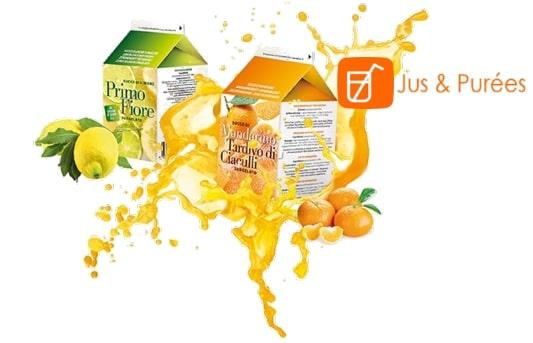 une brique de jus de citron surgelé avec un citron surgelé et une brique de jus d'orange surgelé avec une orange surgelée et leur éclaboussures